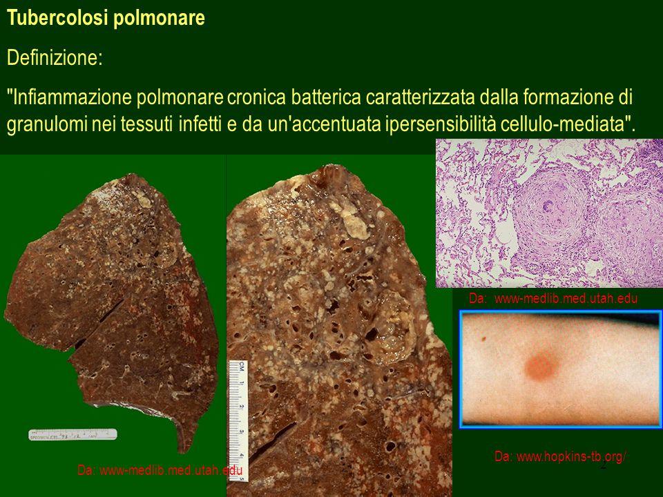 2 Tubercolosi polmonare Definizione: Infiammazione polmonare cronica batterica caratterizzata dalla formazione di granulomi nei tessuti infetti e da un accentuata ipersensibilità cellulo-mediata .