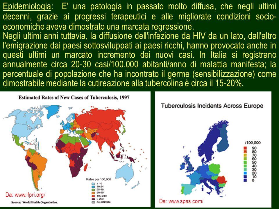 3 Epidemiologia: E una patologia in passato molto diffusa, che negli ultimi decenni, grazie ai progressi terapeutici e alle migliorate condizioni socio- economiche aveva dimostrato una marcata regressione.