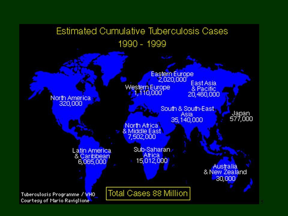 6 Si ritiene che nel mondo la tubercolosi provochi annualmente circa il 6% dei decessi, uccidendo diversi milioni di persone.