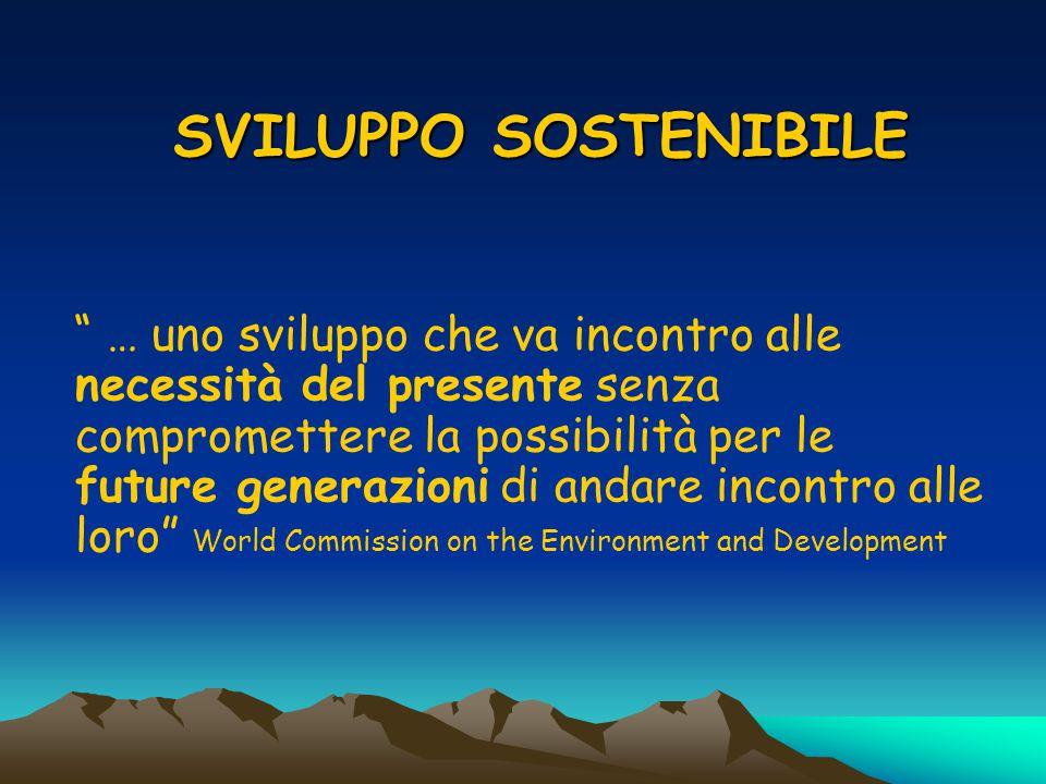 Conferenza dell'ONU su Ambiente e Sviluppo di Rio de Janeiro del 1992 (Documento programmatico) …Gli amministratori locali dovranno consultare i cittadini e la comunità, le organizzazioni economiche e industriali per raccogliere informazioni e costruire il consenso intorno ad una strategia per lo sviluppo sostenibile.