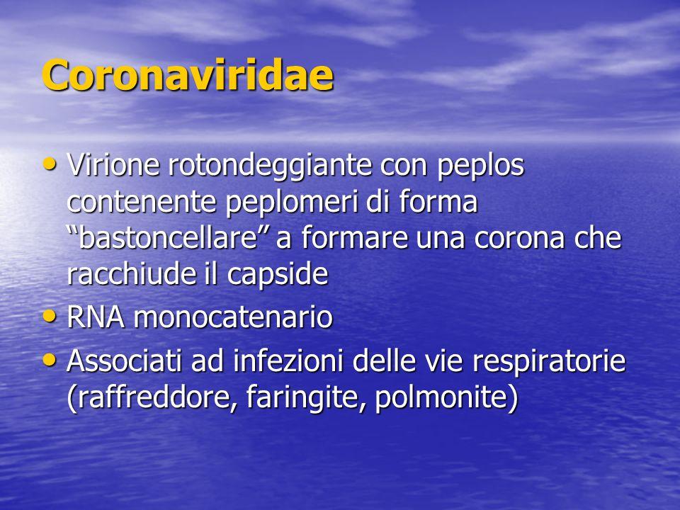 Coronaviridae Virione rotondeggiante con peplos contenente peplomeri di forma bastoncellare a formare una corona che racchiude il capside Virione rotondeggiante con peplos contenente peplomeri di forma bastoncellare a formare una corona che racchiude il capside RNA monocatenario RNA monocatenario Associati ad infezioni delle vie respiratorie (raffreddore, faringite, polmonite) Associati ad infezioni delle vie respiratorie (raffreddore, faringite, polmonite)