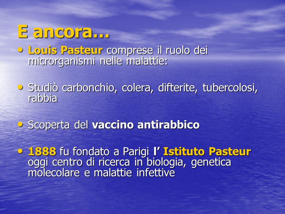 E ancora… Louis Pasteur comprese il ruolo dei microrganismi nelle malattie: Louis Pasteur comprese il ruolo dei microrganismi nelle malattie: Studiò carbonchio, colera, difterite, tubercolosi, rabbia Studiò carbonchio, colera, difterite, tubercolosi, rabbia Scoperta del vaccino antirabbico Scoperta del vaccino antirabbico 1888 fu fondato a Parigi l' Istituto Pasteur oggi centro di ricerca in biologia, genetica molecolare e malattie infettive 1888 fu fondato a Parigi l' Istituto Pasteur oggi centro di ricerca in biologia, genetica molecolare e malattie infettive