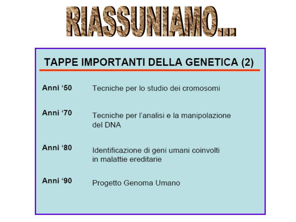 Scopi 1-Identificare i rischi determinati da mutazioni genetiche presenti nella coppia e nei familiari; 2-Anticipare le caratteristiche degli esami per le m.