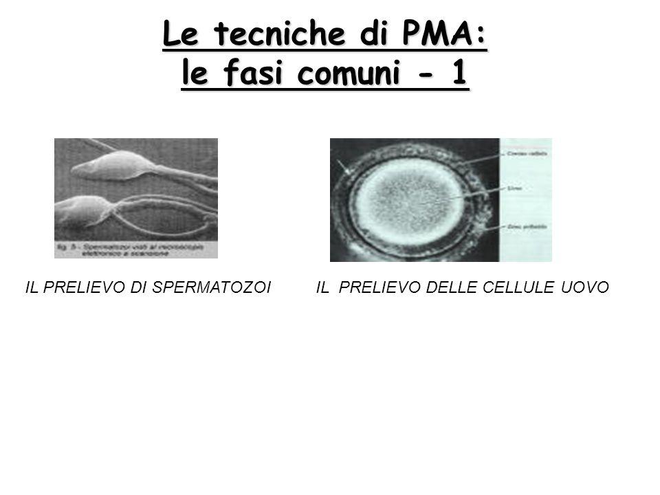 Le tecniche di PMA: le fasi comuni - 1 IL PRELIEVO DELLE CELLULE UOVOIL PRELIEVO DI SPERMATOZOI