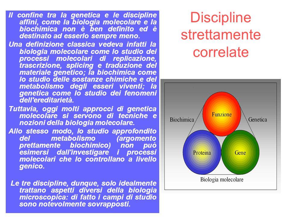 Discipline strettamente correlate Il confine tra la genetica e le discipline affini, come la biologia molecolare e la biochimica non è ben definito ed