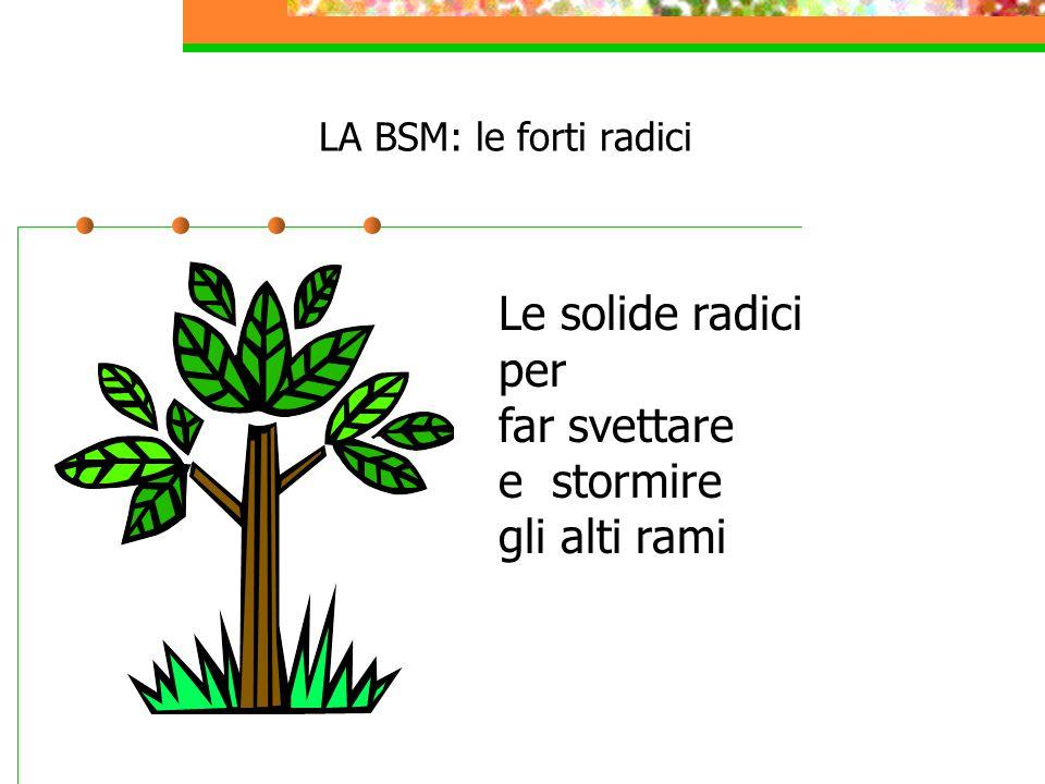 LA BSM: le forti radici Le solide radici per far svettare e stormire gli alti rami