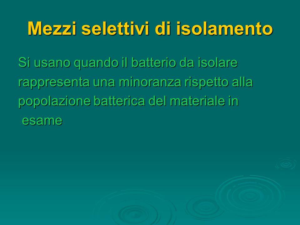 Mezzi selettivi di isolamento Si usano quando il batterio da isolare rappresenta una minoranza rispetto alla popolazione batterica del materiale in esame esame