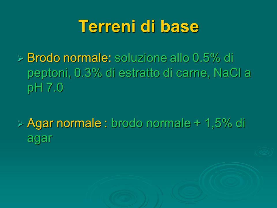 Terreni di base  Brodo normale: soluzione allo 0.5% di peptoni, 0.3% di estratto di carne, NaCl a pH 7.0  Agar normale : brodo normale + 1,5% di agar
