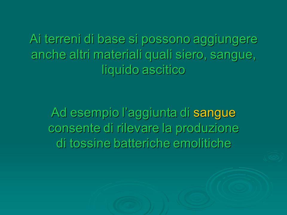 Ai terreni di base si possono aggiungere anche altri materiali quali siero, sangue, liquido ascitico Ad esempio l'aggiunta di sangue consente di rilevare la produzione di tossine batteriche emolitiche