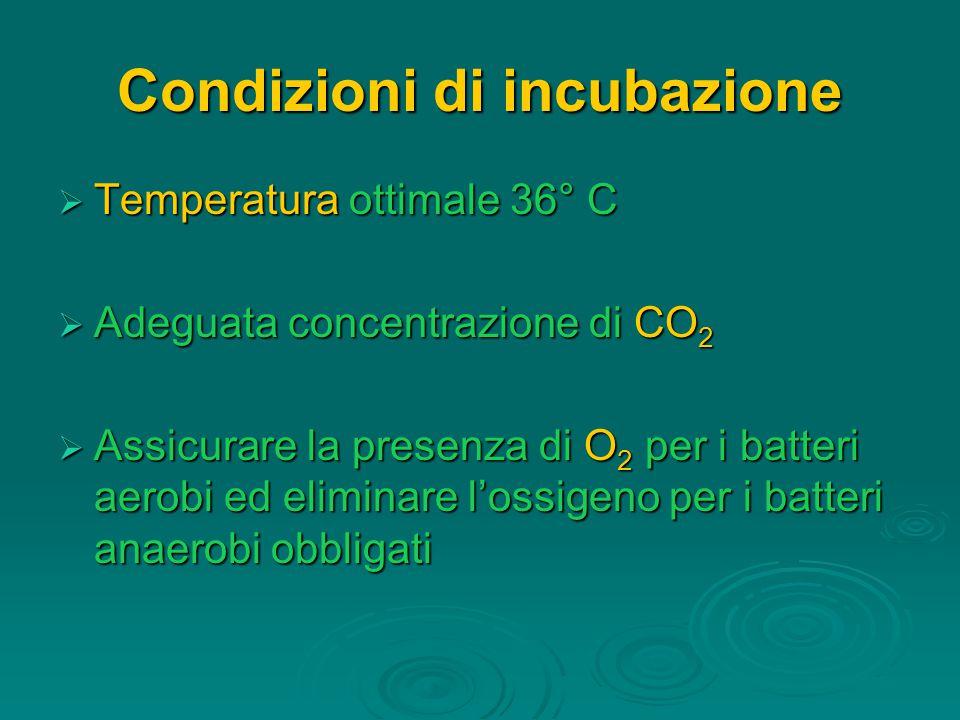Condizioni di incubazione  Temperatura ottimale 36° C  Adeguata concentrazione di CO 2  Assicurare la presenza di O 2 per i batteri aerobi ed eliminare l'ossigeno per i batteri anaerobi obbligati