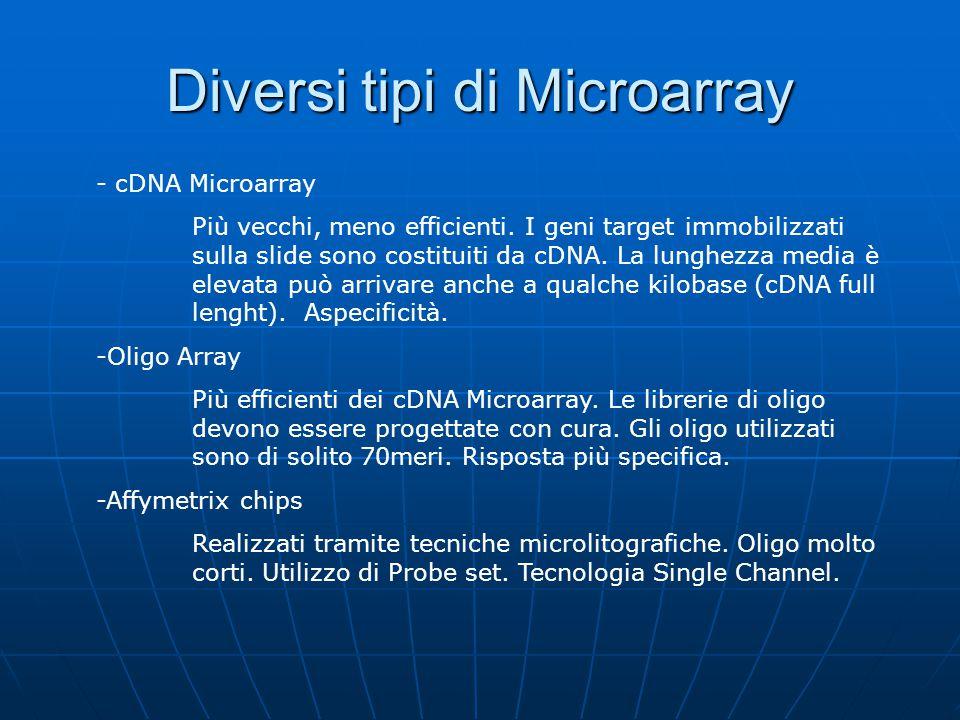 Diversi tipi di Microarray - cDNA Microarray Più vecchi, meno efficienti. I geni target immobilizzati sulla slide sono costituiti da cDNA. La lunghezz