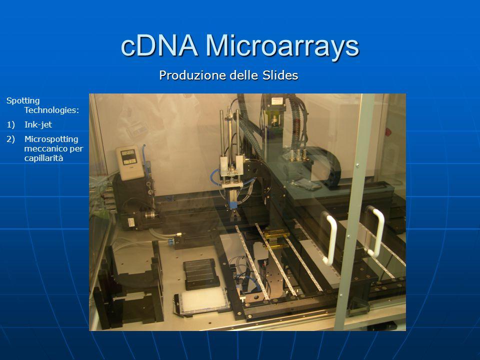 cDNA Microarrays Produzione delle Slides Spotting Technologies: 1)Ink-jet 2)Microspotting meccanico per capillarità