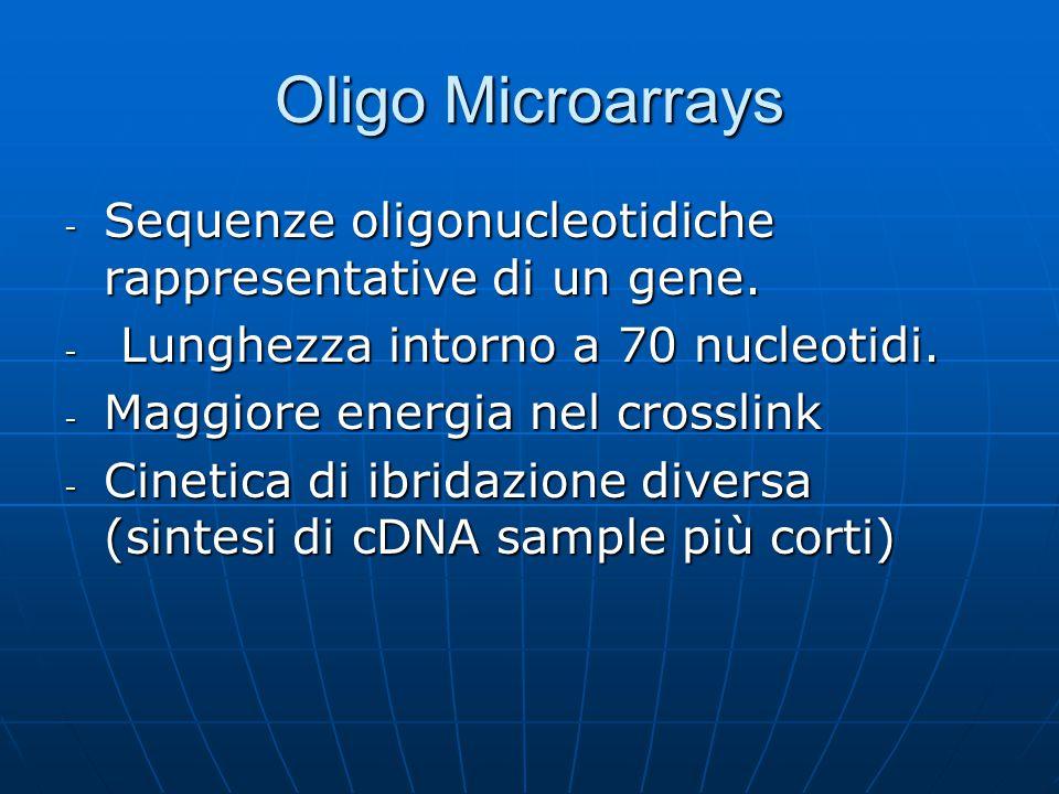Oligo Microarrays - Sequenze oligonucleotidiche rappresentative di un gene. - Lunghezza intorno a 70 nucleotidi. - Maggiore energia nel crosslink - Ci