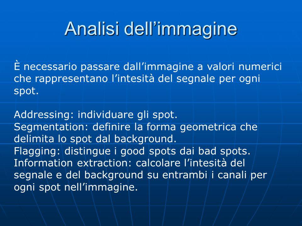 Analisi dell'immagine È necessario passare dall'immagine a valori numerici che rappresentano l'intesità del segnale per ogni spot.