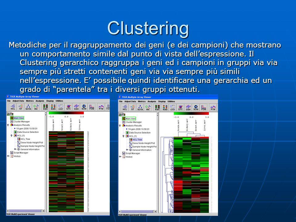 Clustering Metodiche per il raggruppamento dei geni (e dei campioni) che mostrano un comportamento simile dal punto di vista dell'espressione. Il Clus