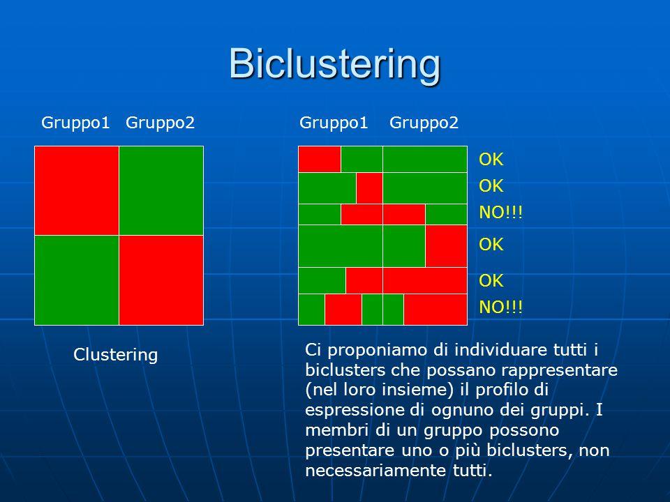 Biclustering Gruppo1Gruppo2 Gruppo1 OK NO!!! OK NO!!! Clustering Ci proponiamo di individuare tutti i biclusters che possano rappresentare (nel loro i