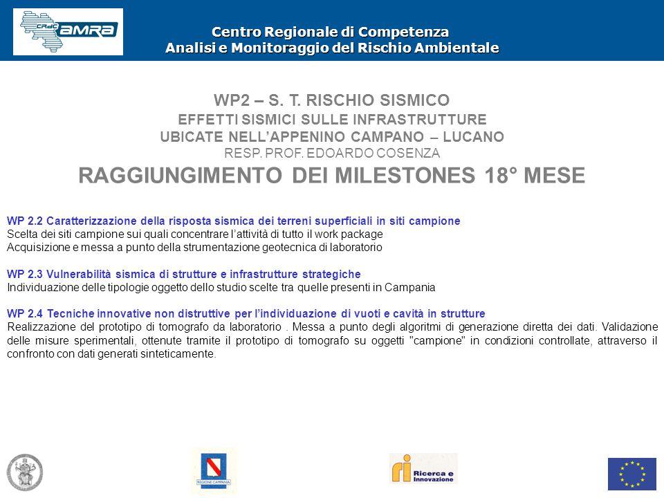 Centro Regionale di Competenza Analisi e Monitoraggio del Rischio Ambientale WP2 – S. T. RISCHIO SISMICO EFFETTI SISMICI SULLE INFRASTRUTTURE UBICATE