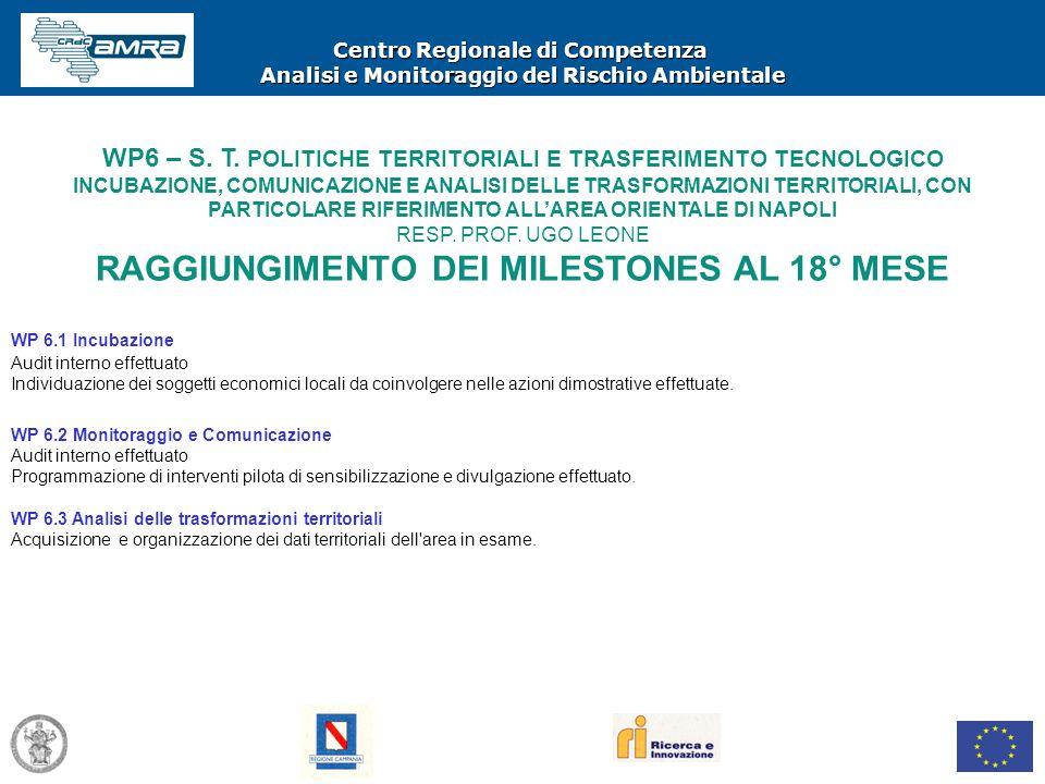 Centro Regionale di Competenza Analisi e Monitoraggio del Rischio Ambientale WP6 – S. T. POLITICHE TERRITORIALI E TRASFERIMENTO TECNOLOGICO INCUBAZION
