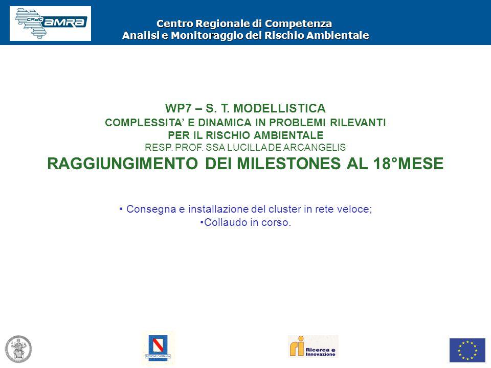 Centro Regionale di Competenza Analisi e Monitoraggio del Rischio Ambientale WP7 – S. T. MODELLISTICA COMPLESSITA' E DINAMICA IN PROBLEMI RILEVANTI PE