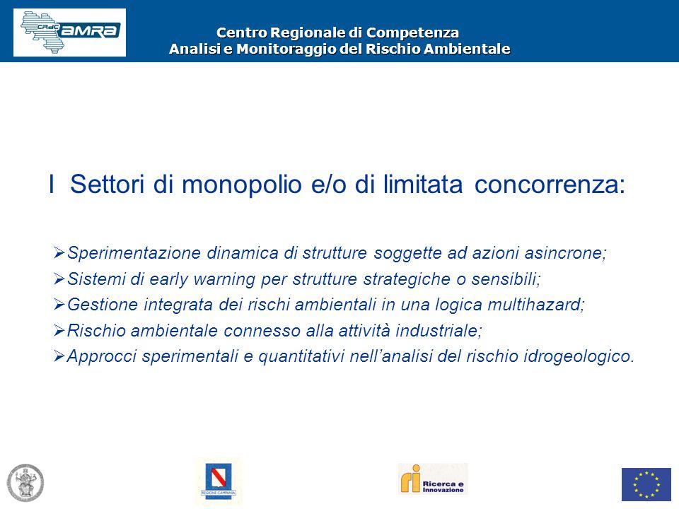 Centro Regionale di Competenza Analisi e Monitoraggio del Rischio Ambientale I Settori di monopolio e/o di limitata concorrenza:  Sperimentazione din
