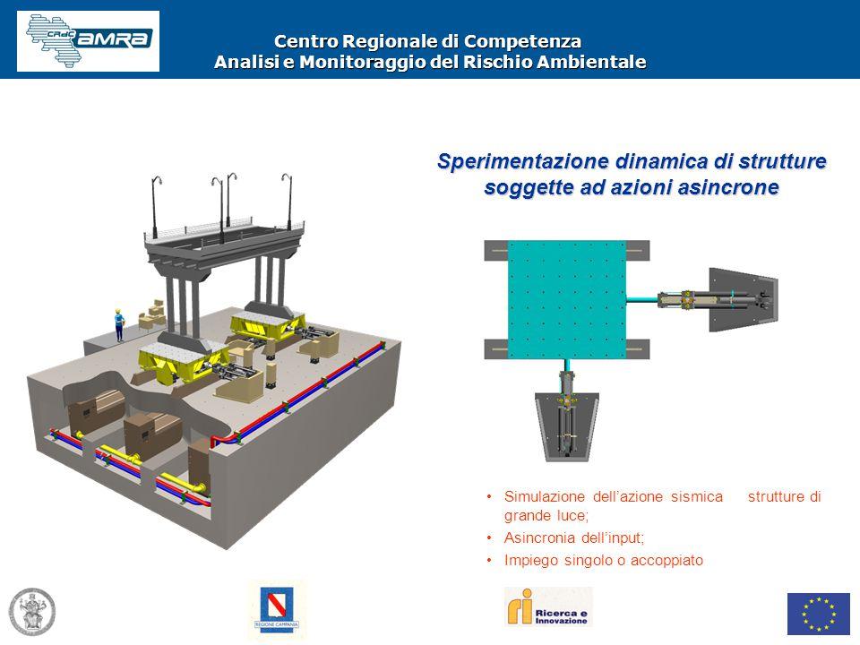 Centro Regionale di Competenza Analisi e Monitoraggio del Rischio Ambientale Simulazione dell'azione sismica su strutture di grande luce; Asincronia d