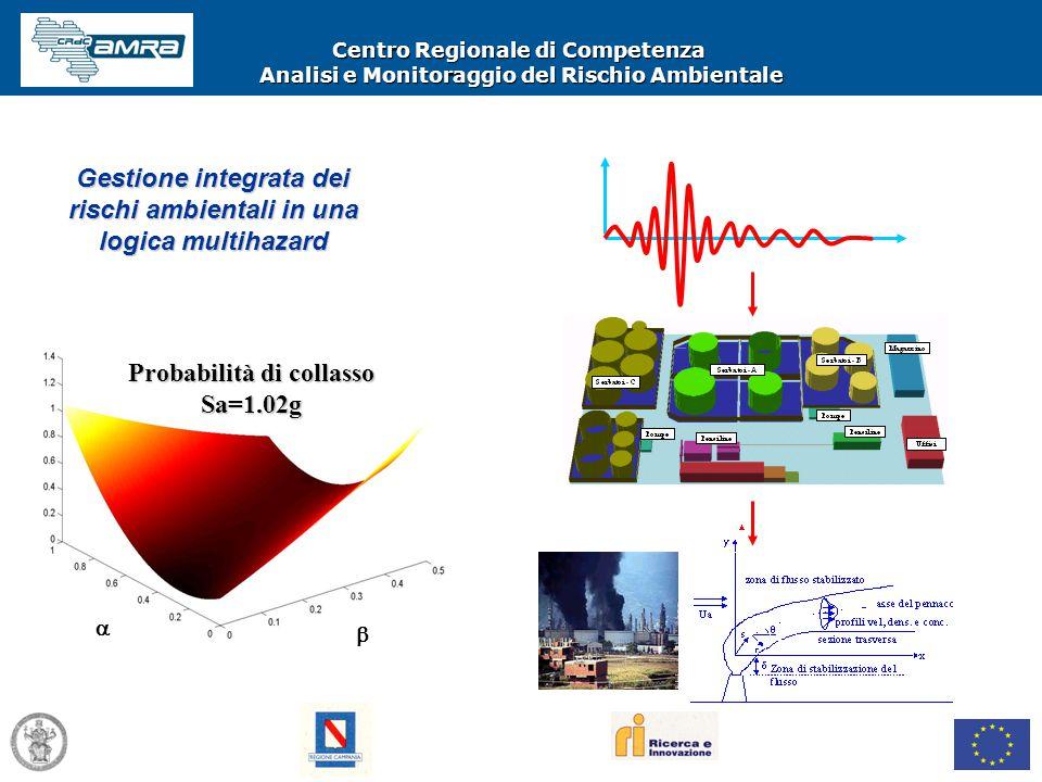 Centro Regionale di Competenza Analisi e Monitoraggio del Rischio Ambientale   Probabilità di collasso Sa=1.02g Gestione integrata dei rischi ambien