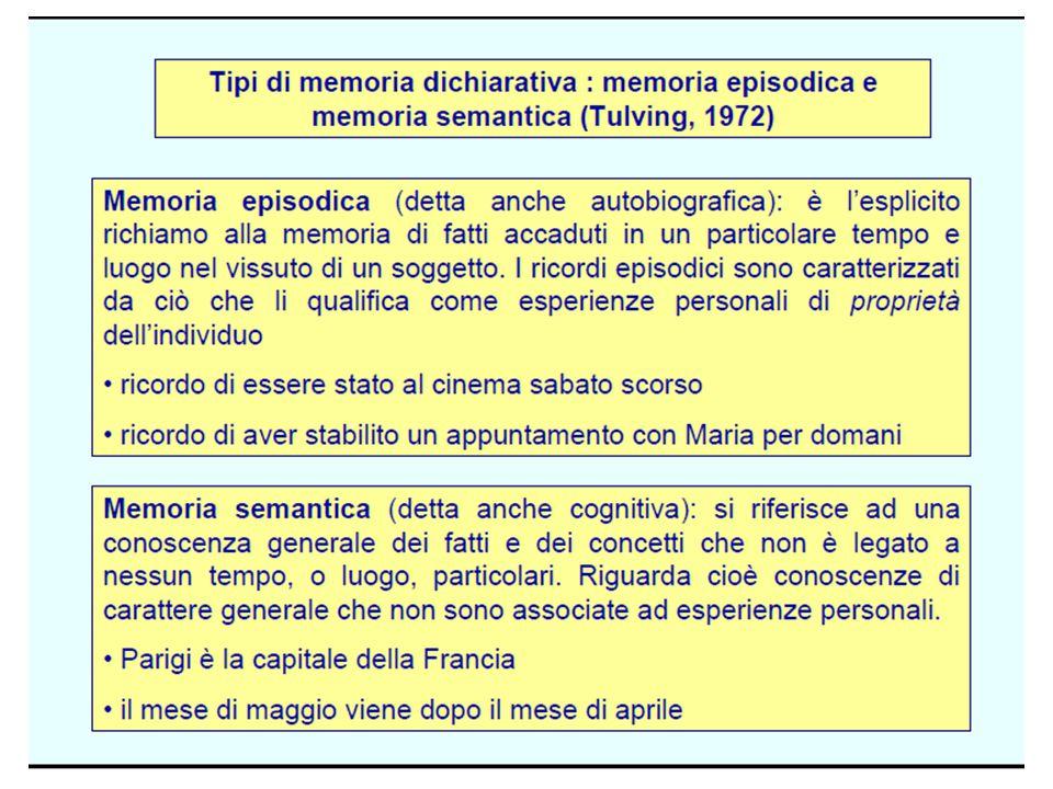 Memoria di Figure categorizzabili 2