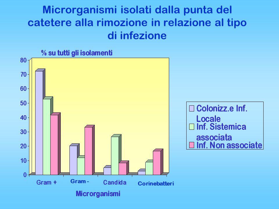Microrganismi isolati dalla punta del catetere alla rimozione in relazione al tipo di infezione Gram - Corinebatteri