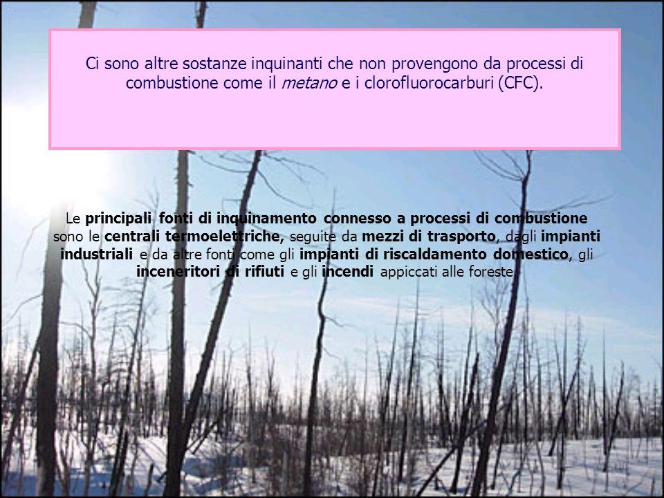 Le principali fonti di inquinamento connesso a processi di combustione sono le centrali termoelettriche, seguite da mezzi di trasporto, dagli impianti