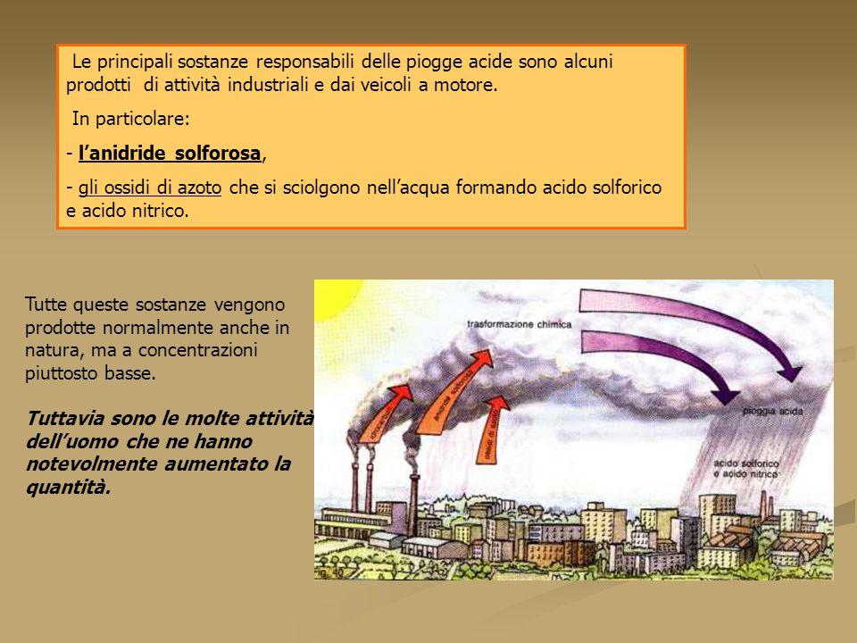 Le principali sostanze responsabili delle piogge acide sono alcuni prodotti di attività industriali e dai veicoli a motore. In particolare: - l'anidri