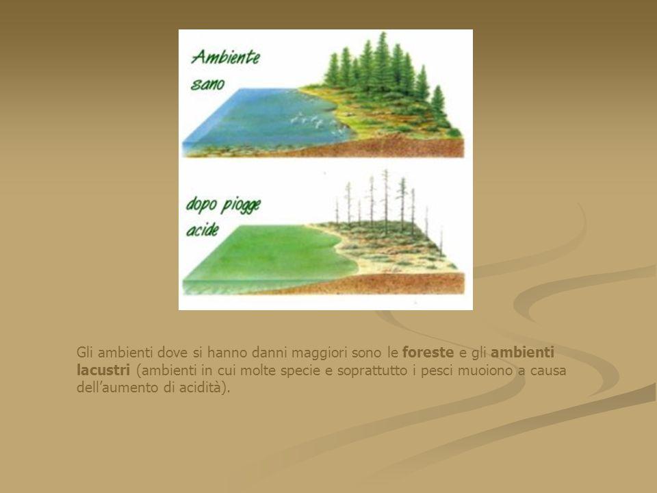 Gli ambienti dove si hanno danni maggiori sono le foreste e gli ambienti lacustri (ambienti in cui molte specie e soprattutto i pesci muoiono a causa