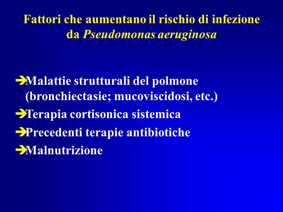 Fattori che aumentano il rischio di infezione da Pseudomonas aeruginosa  Malattie strutturali del polmone (bronchiectasie; mucoviscidosi, etc.)  Terapia cortisonica sistemica  Precedenti terapie antibiotiche  Malnutrizione
