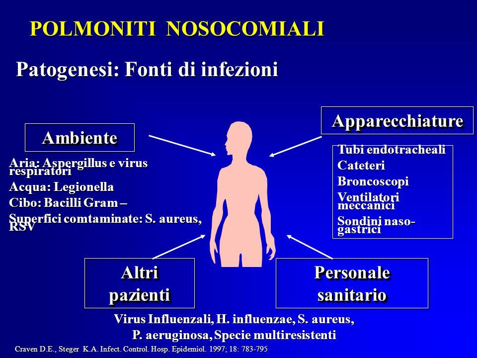POLMONITI NOSOCOMIALI Patogenesi: Fonti di infezioni AmbienteAmbiente ApparecchiatureApparecchiature Altri pazienti Personale sanitario Virus Influenzali, H.