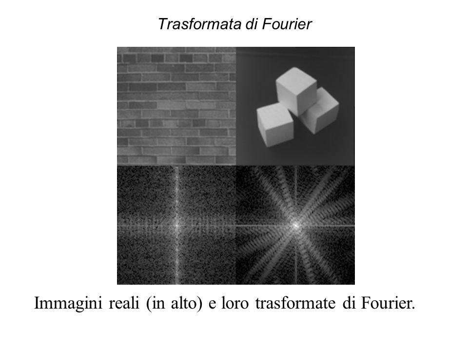 Trasformata di Fourier La trasformata di Fourier evidenzia l'eventuale omogeneità delle forme presenti