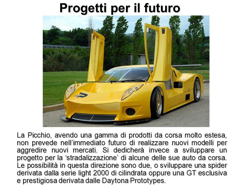 Progetti per il futuro La Picchio, avendo una gamma di prodotti da corsa molto estesa, non prevede nell'immediato futuro di realizzare nuovi modelli p