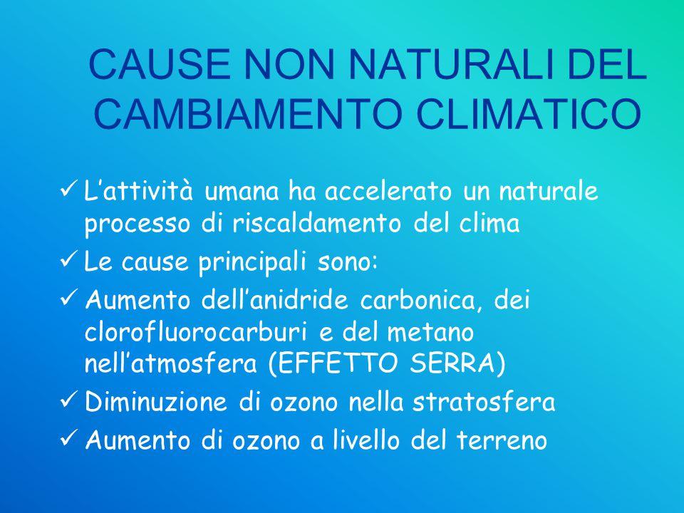 CAUSE NON NATURALI DEL CAMBIAMENTO CLIMATICO L'attività umana ha accelerato un naturale processo di riscaldamento del clima Le cause principali sono: