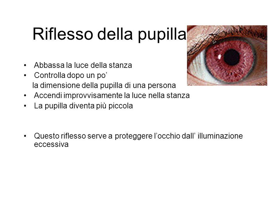 Riflesso della pupilla Abbassa la luce della stanza Controlla dopo un po' la dimensione della pupilla di una persona Accendi improvvisamente la luce n