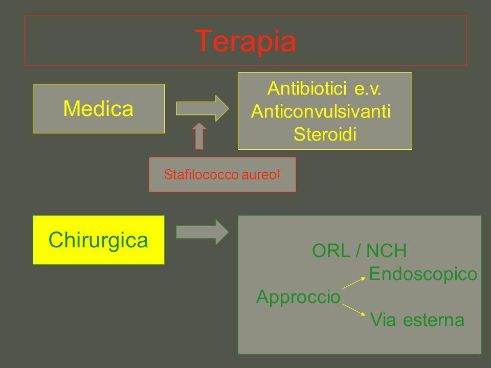 Terapia Medica Antibiotici e.v. Anticonvulsivanti Steroidi Chirurgica ORL / NCH Endoscopico Approccio Via esterna Stafilococco aureo!