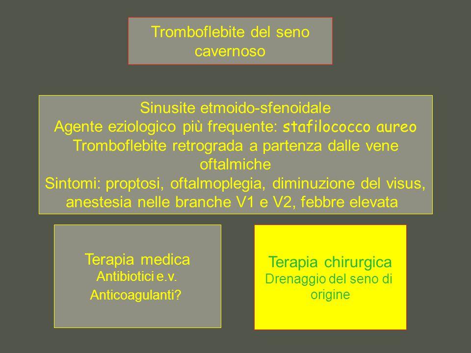 Tromboflebite del seno cavernoso Sinusite etmoido-sfenoidale Agente eziologico più frequente: stafilococco aureo Tromboflebite retrograda a partenza dalle vene oftalmiche Sintomi: proptosi, oftalmoplegia, diminuzione del visus, anestesia nelle branche V1 e V2, febbre elevata Terapia medica Antibiotici e.v.