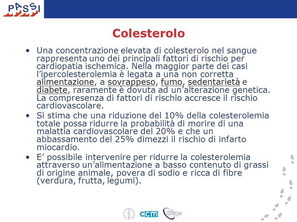 Colesterolo Una concentrazione elevata di colesterolo nel sangue rappresenta uno dei principali fattori di rischio per cardiopatia ischemica.