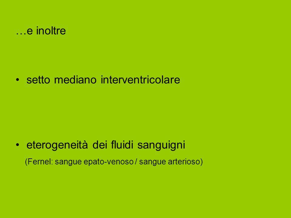 …e inoltre setto mediano interventricolare eterogeneità dei fluidi sanguigni (Fernel: sangue epato-venoso / sangue arterioso)