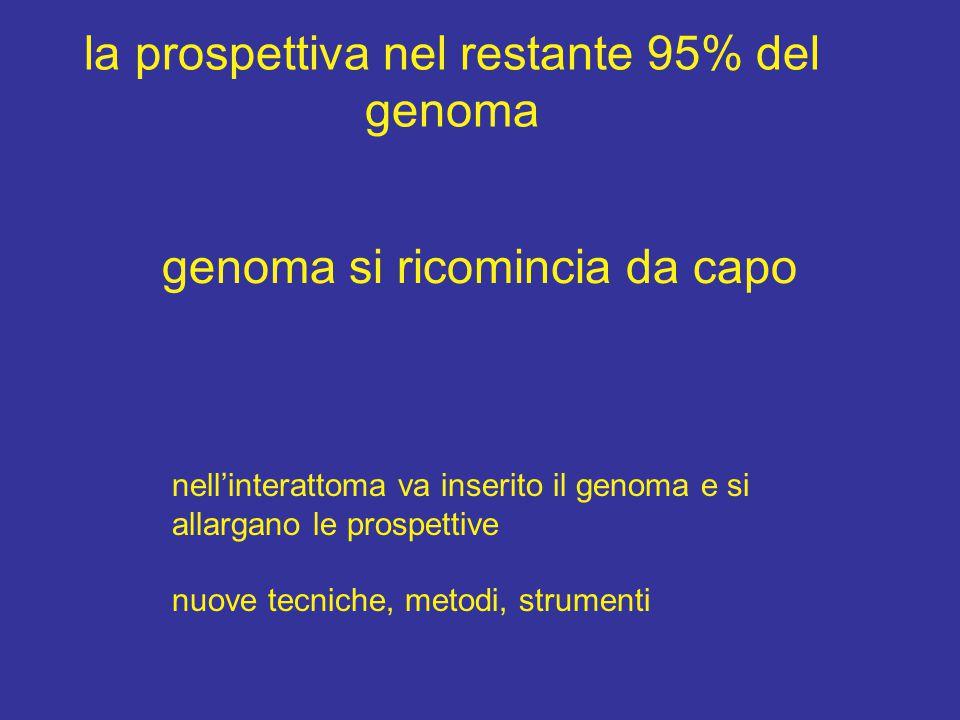 la prospettiva nel restante 95% del genoma genoma si ricomincia da capo nell'interattoma va inserito il genoma e si allargano le prospettive nuove tecniche, metodi, strumenti