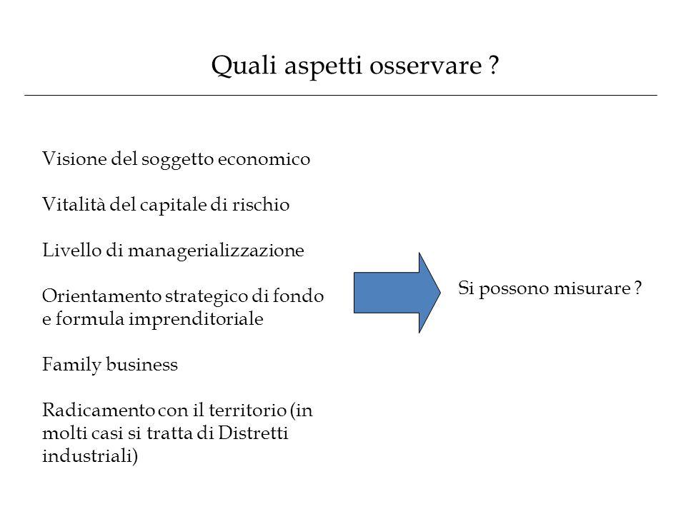 Quali aspetti osservare ? Visione del soggetto economico Vitalità del capitale di rischio Livello di managerializzazione Orientamento strategico di fo