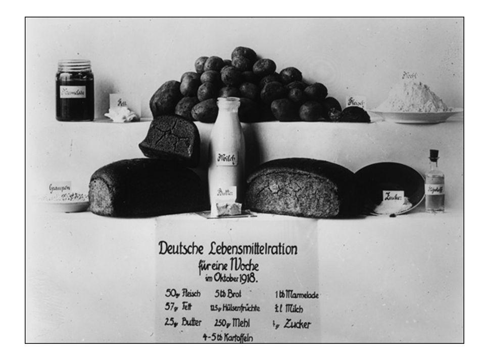 Kohlrübenwinter Il culmine fu raggiunto nell'inverno del 1916/17 chiamato Hungerwinter (inverno della fame).