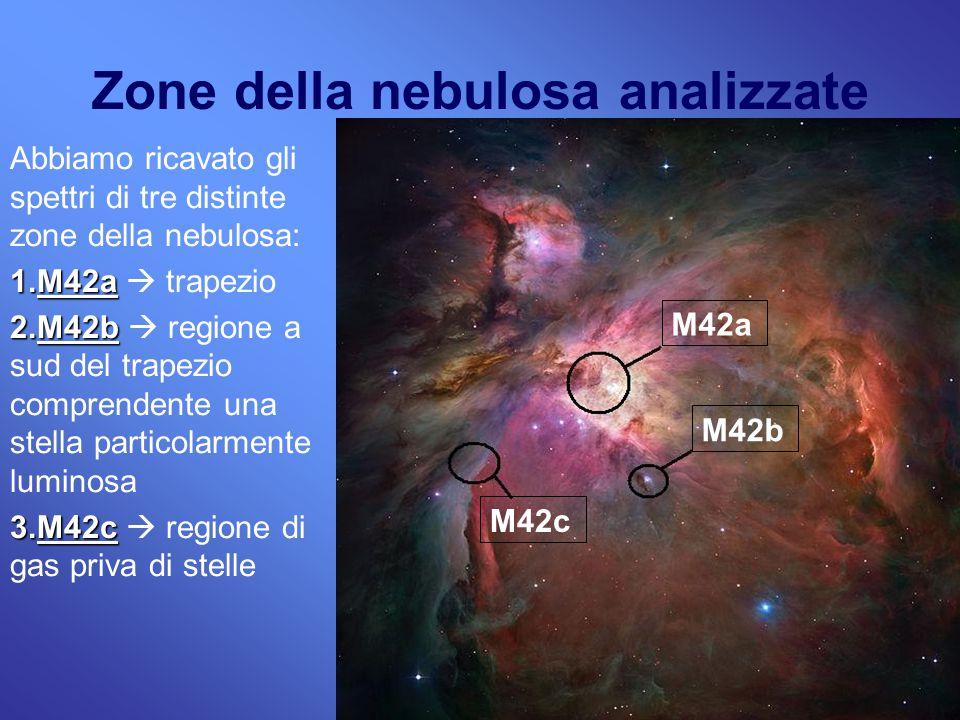 7 Zone della nebulosa analizzate Abbiamo ricavato gli spettri di tre distinte zone della nebulosa: 1.M42a 1.M42a  trapezio 2.M42b 2.M42b  regione a sud del trapezio comprendente una stella particolarmente luminosa 3.M42c 3.M42c  regione di gas priva di stelle M42c M42b M42a