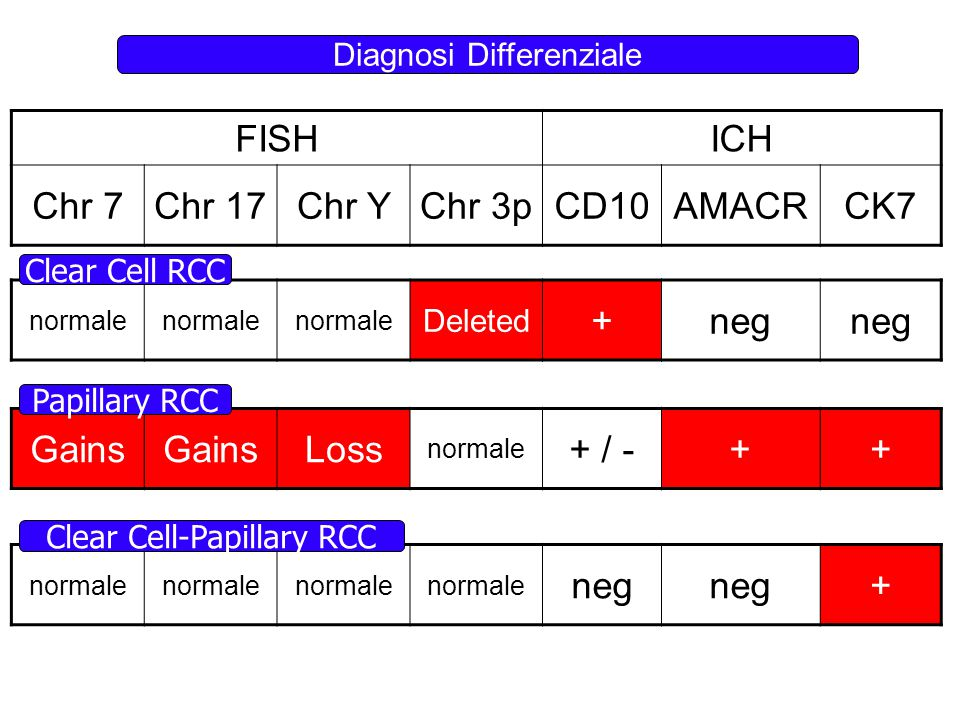 FISHICH Chr 7Chr 17Chr YChr 3pCD10AMACRCK7 normale Deleted +neg Gains Loss normale + / -++ normale neg + Papillary RCC Clear Cell RCC Clear Cell-Papil