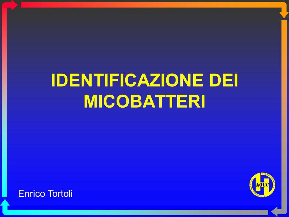 IDENTIFICAZIONE DEI MICOBATTERI Enrico Tortoli