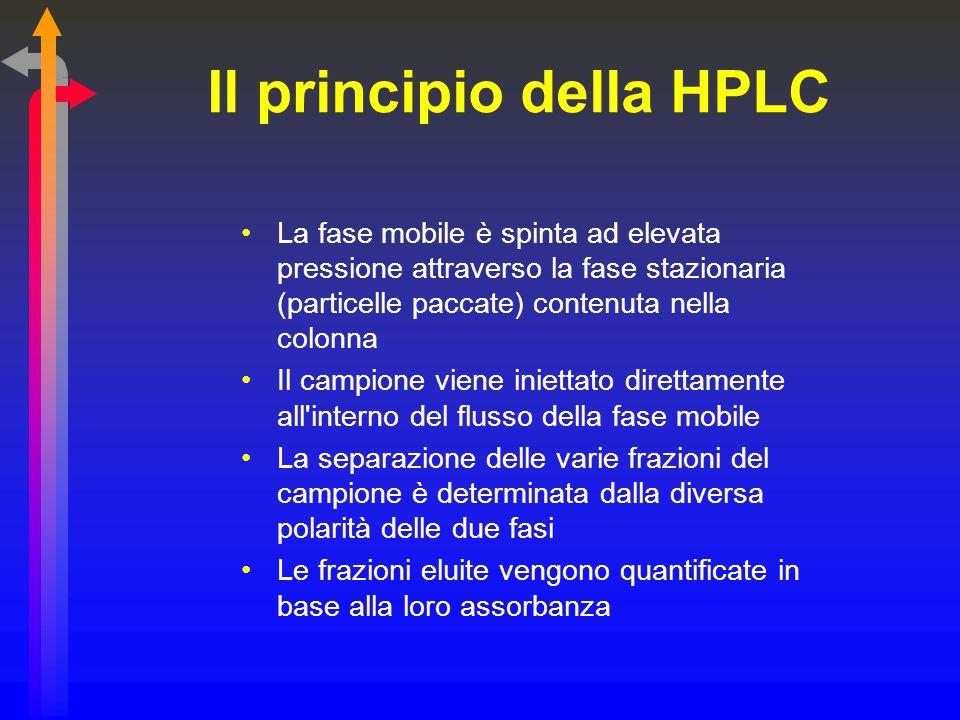 Il principio della HPLC La fase mobile è spinta ad elevata pressione attraverso la fase stazionaria (particelle paccate) contenuta nella colonna Il ca