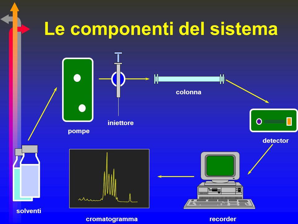 Le componenti del sistema solventi pompe colonna iniettore recorder detector cromatogramma
