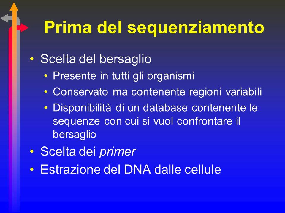 Prima del sequenziamento Scelta del bersaglio Presente in tutti gli organismi Conservato ma contenente regioni variabili Disponibilità di un database